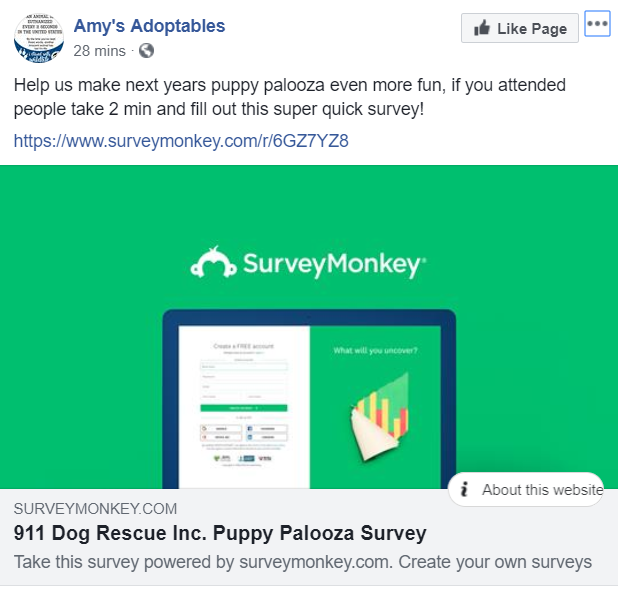 Amys Adoptables shares a customer survey to recieve feedback on people who attended their puppy palooza event