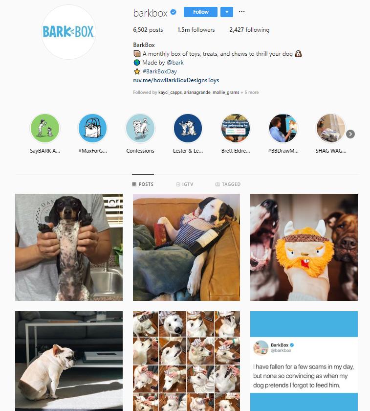 barkbox instagram account