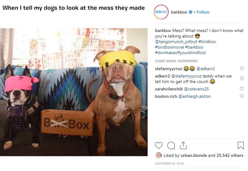 barkbox user generated content
