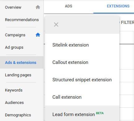 google ads lead