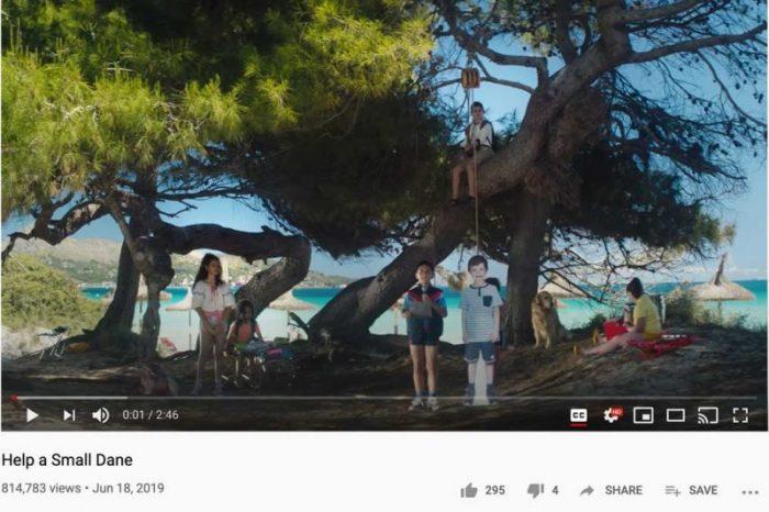 help-a-small-dane-youtube
