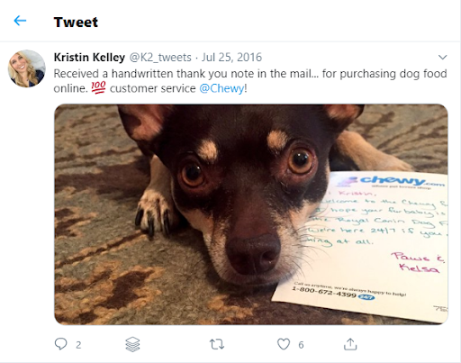 Chewy thank you note, with customer's dog